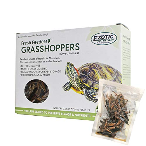 Fresh Feeders (Grasshoppers) - All Natural High Protein Insect Treat in Single Serving Pouches for Chickens, Wild Birds, Hedgehogs, Bluebirds, Reptiles, Sugar Gliders, Lizards, Bearded Dragon, Fish