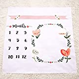 Newborn Baby Milestone Keepsake Blanket Baby's First Year Monthly Milestone Personalized Photography Props
