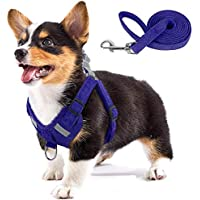 No Pull Dog Harness Harness and Leash for Walking Escape Proof, Adjustable Soft Vest with Reflective Strip (Blue, XS)