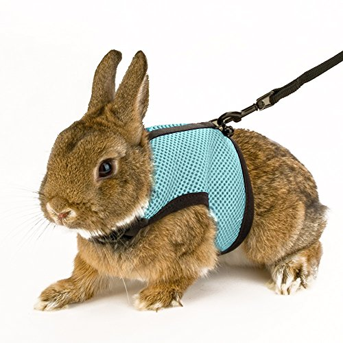 calunce-soft-rabbits-harness-with-leash-blue-1pcs