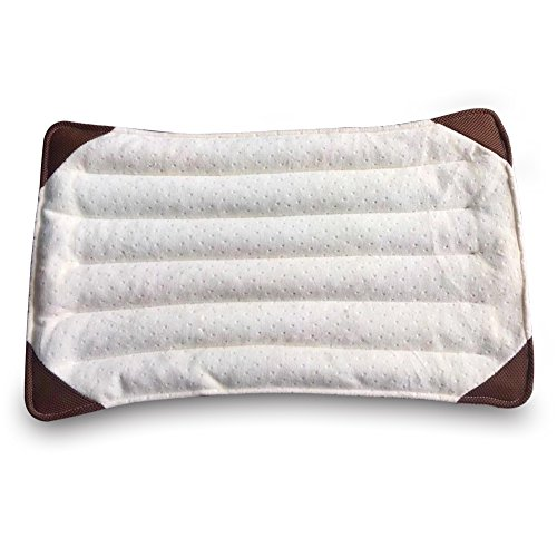 Medical Pillows - Health Care Natural Amber Health Pillows for Sleeping (21x12 inch, 2.6LB, - Zebra Versace
