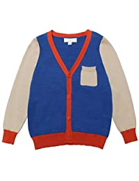 Mini Phoebee Little Boys Color Blcok V-Neck Cotton Knitted Cardigan Sweater