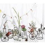 HW GLOBAL Black Wire Metal Frame Flower Vase, Diffuser Holder, Light Candle Holders/Indoor and Outdoor Decoration (F)