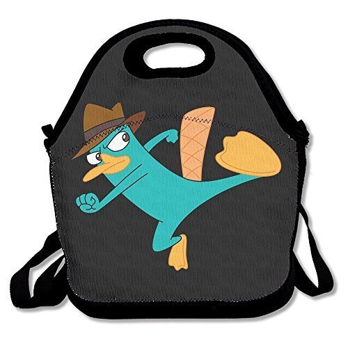 Willcallyou Reusable Snack Bag-- Perry The Platypus