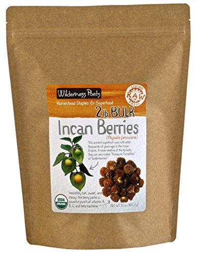 Wilderness Poets Incan Berries - Golden Berries - Organic Raw Dried Incan Berries, 2 lb (32 oz)