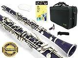 D\'Luca 200PR 200 Series ABS 17 Keys Bb Clarinet, Double Barrel, Canvas Case, Cleaning Kit, Purple