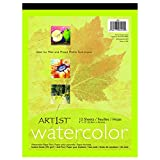 Pacon 4910 9'' X 12'' Watercolor Paper Pad 12 Count