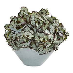 Nearly Natural 8417 Rex Begonia Artificial Green Vase Silk Plants, 20