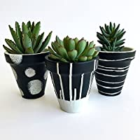 Set de 3 macetas de barro decorativas Negro-Blanco