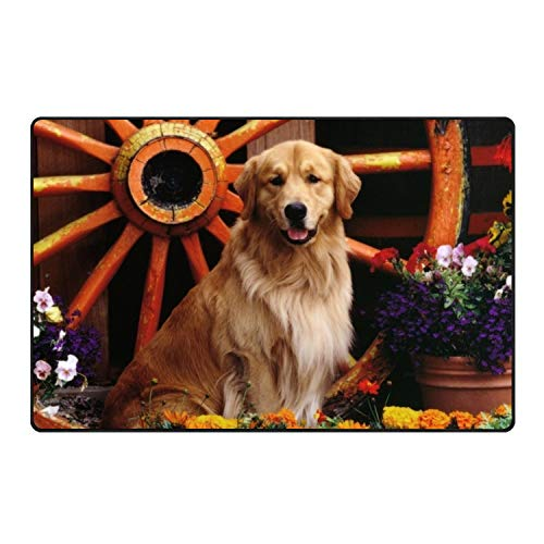 KSLIDS Labrador Retriever Mix Floor Mat Home Decor for sale  Delivered anywhere in USA