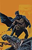 img - for Batman: Hush Returns book / textbook / text book