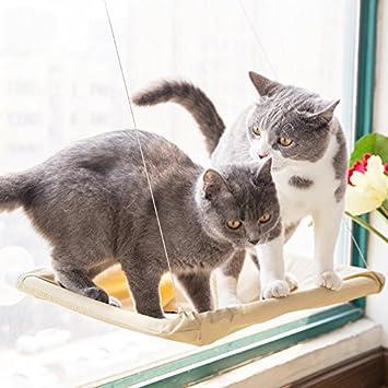 Letone Cama de gato con ventana montada, hamaca para mascotas, asiento de asiento de sol con cojín para colgar: Amazon.es: Productos para mascotas