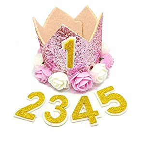 PET SHOW Crown Dog Birthday Hat for Girls Reusable Birthday Party Cat kitten Headband with 1-9 Figures Charms Grooming Accessories Pack of 1(Pink)