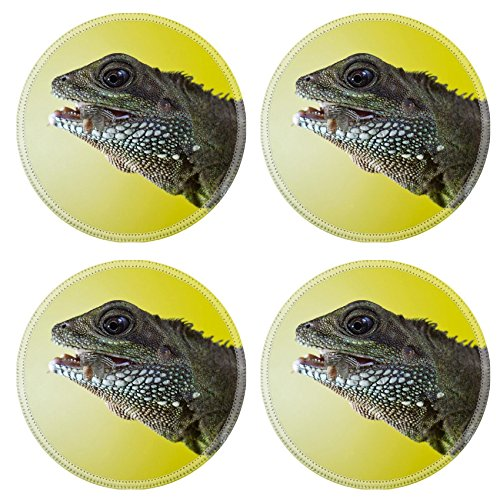 Liili Round Coasters Non-Slip Natural Rubber Desk Pads Close up portrait of beautiful water dragon lizard reptile eating an insect Photo 19504434