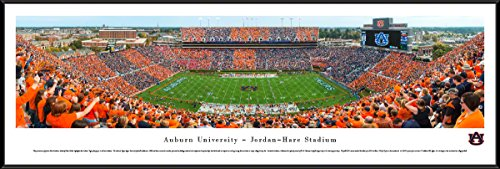 Hare Framed Print (Auburn Tigers Football - Stripe The Stadium - Blakeway Panoramas College Sports Posters with Standard Frame)