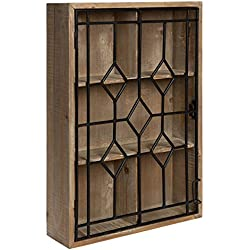 Kate and Laurel - Megara Wooden Wall Hanging Curio Cabinet for Open Storage with Decorative Black Iron Door, Rustic Brown