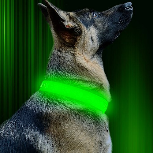 Vizbrite Led Dog Collar  Usb Rechargeable Dog Paw Pattern Pet Collar  Green Glowing Collar For Night Activity  Flashing Collar For Large Dogs By  Green Green Light