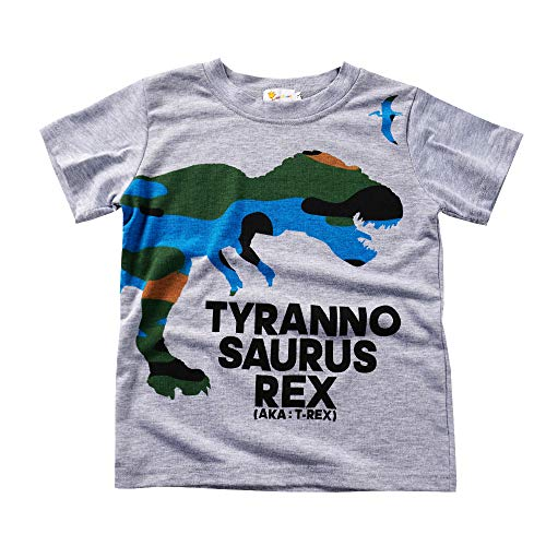 Little Boys Dinosaur Sweatshirt Toddler Top T-Shirt Rex Dino Baby Easter Clothes (6T/6-7Years/130, D-Grey1) (D Trex)