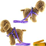 Adjustable-Nylon-Cat-Dog-Pet-Harness-and-Leash-Set-for-Cats-Dogs-Pets-2-Pack