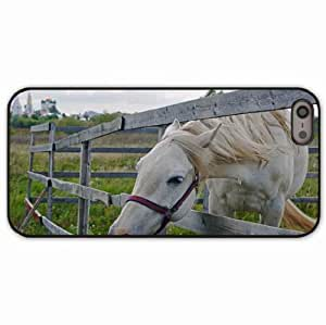 iPhone 5 5S Black Hardshell Case horse paddock grass face Desin Images Protector Back Cover