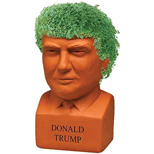Donald Trump Chia Freedom Of Choice Live Plant Statue - Presidential Bust