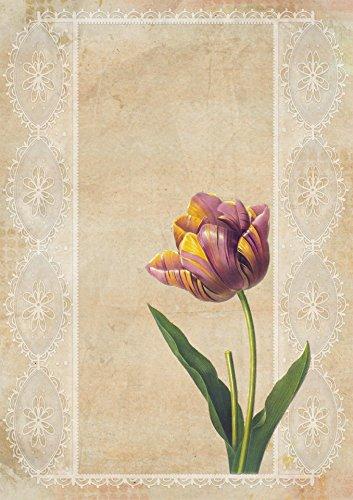 Laminated Poster Tulip Vintage Flower Collage Illustrations Print