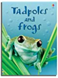 Tadpoles and Frogs (Usborne Beginners)