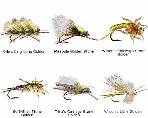 Golden Stonefly Nymph - 4