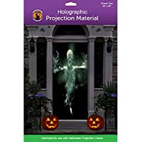 "36"" x 80"" Door Holographic Rear Projection Screen with Mounting Hardware for Projecting Halloween Videos"