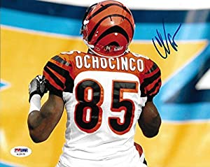 Chad Ochocinco Johnson Signed Bengals Football 8x10 Photo Picture Auto'd - PSA/DNA Certified - Autographed NFL Photos
