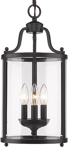 Golden Lighting 1157-3P BLK Payton Foyer – Caged, Black