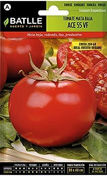 Semillas Hortícolas - Tomate Ace 55 VF - Batlle: Amazon.es: Jardín