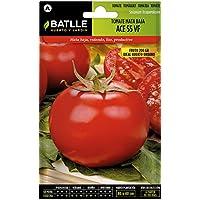 Semillas Hortícolas - Tomate Ace 55 VF