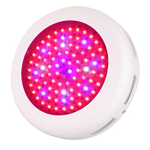 Buy now Roleadro UFO LED Grow Light, 270W Indoor Patio Plants