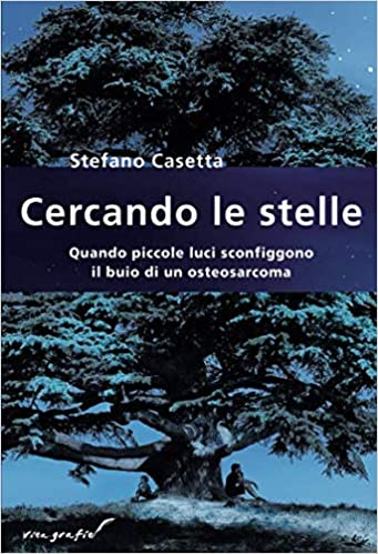 Quando piccole luci sconfiggono il buio di un osteosarcoma Vita-grafie: Amazon.es: Stefano Casetta: Libros en idiomas extranjeros