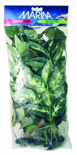 - Marina Ecoscaper Variety Pack including Echinodorus Silk Plant, Lobelia Silk Plant, Houttoynia Cordata and Trapa Natans
