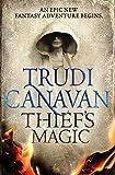 Thief's Magic (Millennium's Rule (1))