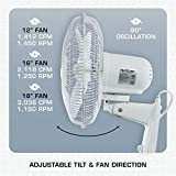 Hurricane HGC736505 Wall Mount Fan 16 Inch, Supreme Series, 90 Degree Oscillation 3 Speed Settings, Adjustable Tilt - ETL Listed, 16-Inch, White