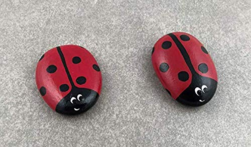 Ladybug Hand Painted Rocks - 2 ()