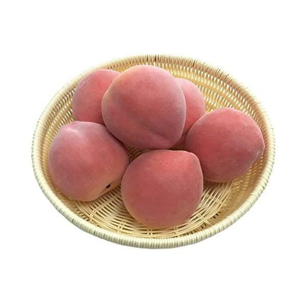 Gresorth-6pcs-Artificial-Peach-Fake-Fruit-Decoration-Lifelike-Food-Toy-Realistic-Home-Party-Decorative-Model-Props