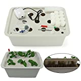 Indoor Hydroponics Grower Kit, Pathonor 11 Pod 3.5 gal Non-transparent DIY Educational Self Watering Hydroponics Tools Plant Cloner Kit Include Aquarium Air Pump, Buoy, Planting Baskets etc
