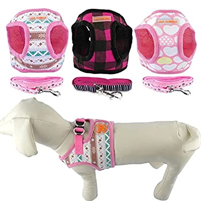 Didog No Pull Dog Vest Harness 4' Matching Leash Comb for Small Dogs - Made of Soft Cotton -Fit for Pug Yorkies Small Medium Breeds Walking Running