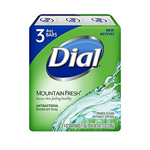 dial bar soap mountain fresh - 8