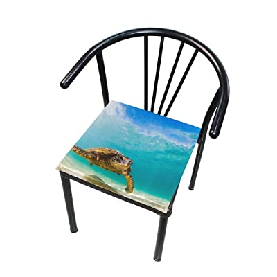 """Bardic HNTGHX Outdoor/Indoor Chair Cushion Ocean Animal Turtle Square Memory Foam Seat Pads Cushion for Patio Dining, 16"""" x 16"""": Home & Kitchen"""