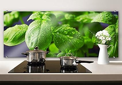 Spritzschutz Glasbild - Frisches Basilikum - Panorama - Küchenspritzschutz  - mit abgerundeten Ecken - 100x40 cm mit Klemmbefestigungen - SP46232 - ...