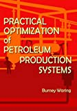 img - for Practical Optimization of Petroleum Production Systems book / textbook / text book