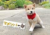 Japanese Animal Calendar 2013 Mame-Shiba