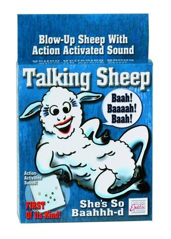 Talking Sheep - 6