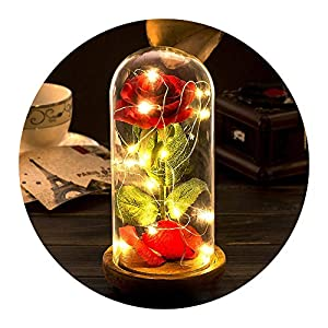 Beauty and The Beast Rose,2 pcs Enchanted Red Rose in Glass Dome with LED Light,Best Present for Her/Mom Holiday Birthday Party Wedding Anniversary Valentine Home Decor (Remote Control)
