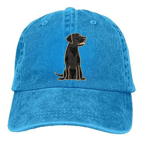 - 60 R Cleaner Black Labrador Retriever Denim Hat Adjustable Great Baseball Hatsretriever Hats